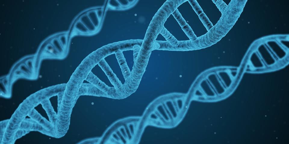 blue 3D strand of DNA